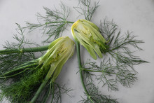 Close Up Of Fennel Bulbs
