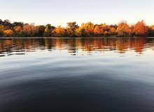 A Closeup View Of A Sunny Lake...