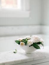 Fresh Camellias In A Modern Wh...