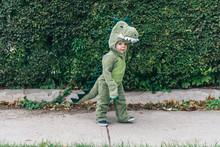 Toddler In A Dinosaur Costume Walking Down The Sidewalk