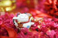Chinese Fortune Cat
