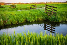 Beautiful Grassland With River...