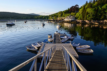 Jetty On Seal Harbor, Acadia N...