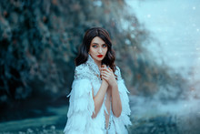 Attractive Pretty Woman In A White Cape With Silver And Feathers. The Gentle Snow Queen. Portrait Of A Luxurious Brunette, Hairstyle Retro Style Cold Wave. Big Blue Eyes And Red Lips. Gentle Makeup