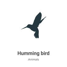 Humming Bird Vector Icon On White Background. Flat Vector Humming Bird Icon Symbol Sign From Modern Animals Collection For Mobile Concept And Web Apps Design.