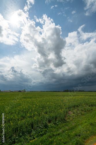 Foto auf Gartenposter Landschappen stormy clods and green field