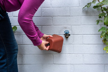 Winterization, Woman's Hands Installing Foam And Plastic Faucet Cover To Prevent Pipes Freezing, On A Blue Gray Painted Brick Wall, Rose Plants