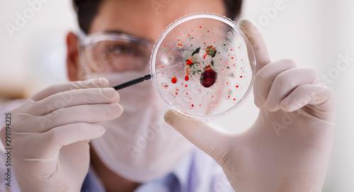 Cuadros en Lienzo Male doctor working in the lab on virus vaccine