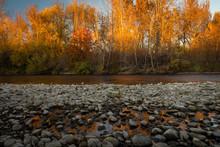 Landscape Of The Boise River I...