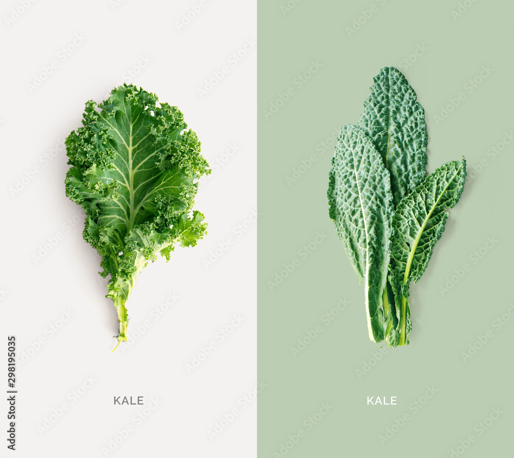 Fototapety, obrazy: Creative layout made of kale on white background. Flat lay. Food concept. Macro concept.