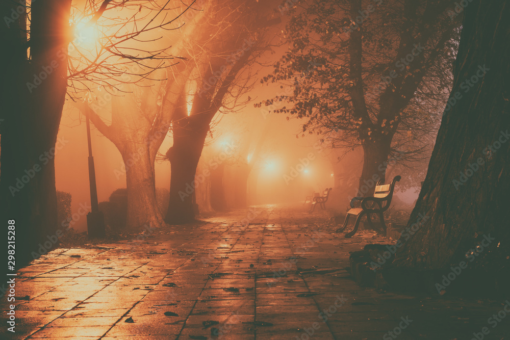Fototapety, obrazy: Foggy alley in night city park, beautiful misty landscape with burning lanterns, trees and benches