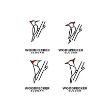 Set Woodpecker Bird Line Logo Icon Design Template Vector