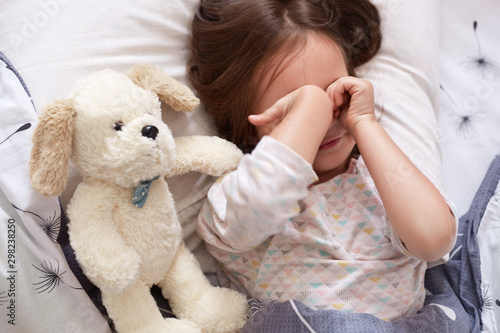 Obraz Sleepy pretty little child rubbing her eyes in morning while lying in bed. Lovely small child with dark natural hair lies on comfortable bed with her soft white toy dog, relaxing in cot in morning. - fototapety do salonu