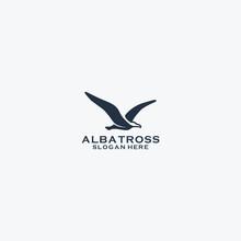 Albatroos Logo Design
