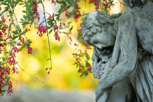 Detail Of An Old Gravestone In St. Marx Cemetery In Autumn