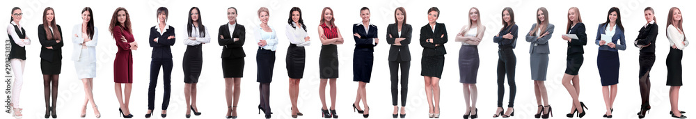 Fototapeta group of successful young businesswoman standing in a row