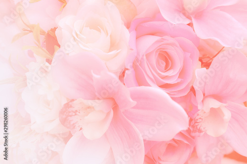 Photo Blurred of rose flowers pink blooming
