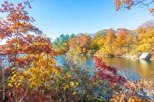 Rock and fall foliage near a lake Canvas Print