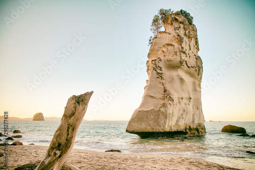 Poster de jardin Cathedral Cove Amazing Te Hoho Rock at sunset, Cathedral Cove Marine Reserve, Coromandel Peninsula, New Zealand