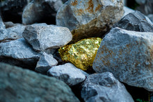 Gold Nugget Surrounded By Grey Granite Stones