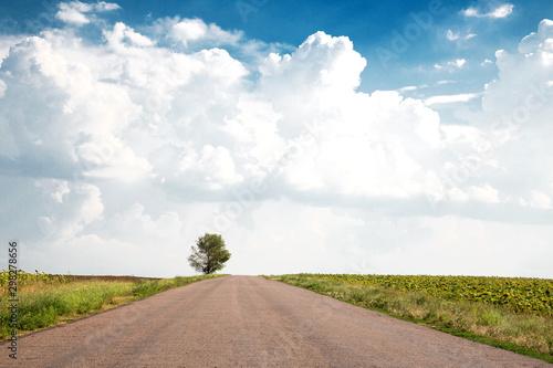 Photo  Amazing landscape