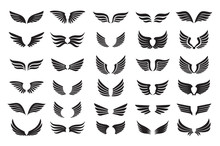 Set Of Black Wings. Vector Ill...