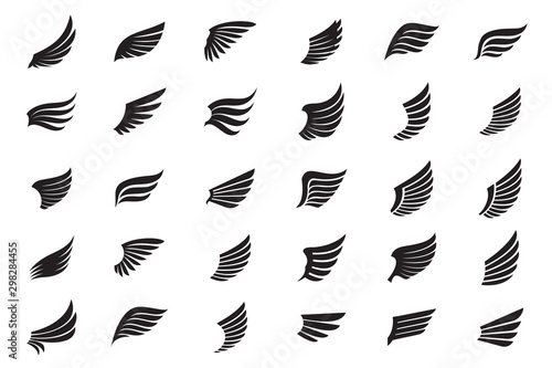 Fototapeta Big Collection of white Wings. Vector Illustration and outline Icons. obraz