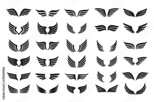 Fototapeta Set of black shape of Wings. Vector Illustration and outline Icons. obraz