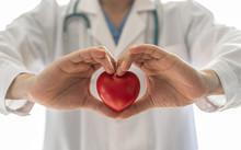Cardiovascular Disease Doctor ...