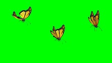 Flying Butterflies With Green ...
