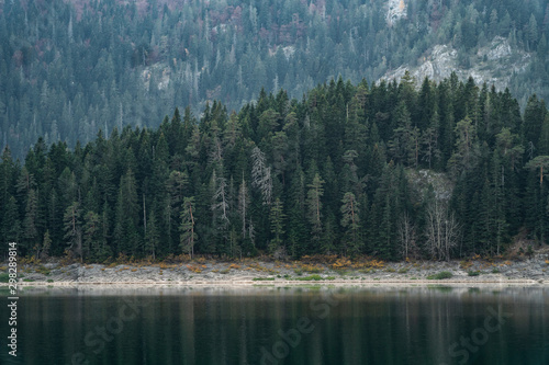 Recess Fitting Gray traffic Mountain lake with coniferous forest in National Park Durmitor, Montenegro, Europe.
