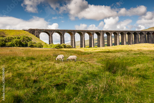 Famous Ribble Valley viaduct railway crossing seen in all its glory Wallpaper Mural