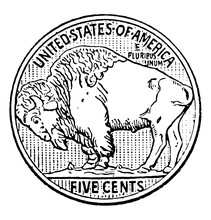 Buffalo Nickel Vintage Illustration.