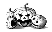 Composition Of Carved Pumpkins For Halloween. Retro Style Black And White Vector Illustration Of 3 Jack O Lanterns