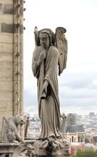 Detail Of Statue Of Notre Dame De Paris