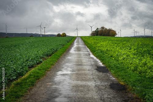 Photo  geteerter Feldweg nass zwischen zwei Feldern führt zu mehreren Windkrafträdern