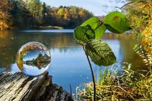 Jezioro I Las, Odbicie W Szklanej Kuli, Piękny Jesienny Krajobraz