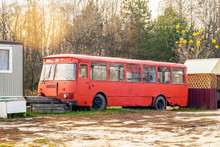 An Old Abandoned Bus In The Open Air Stands Against The Background Of A Pine Forest. Red Racy Rare Bus In The Woods