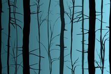 Silhouettes Of Trees In The Da...