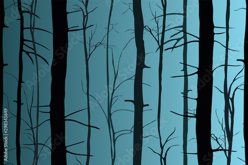 Canvas Prints Birds in the forest Silhouettes of trees in the dark night forest. Fantastic mysterious landscape. Foggy forest background. Paranormal, mystical concept. Vector illustration.