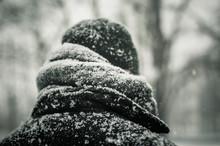 Man In Black Jacket In Snow, C...