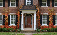 Traditional Two Story Brick House With Colorful Ivy In Fall.