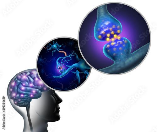 Poster de jardin Route Neurology Anatomy