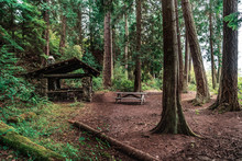 A Picnic Area In The Woods At Deception Pass State Park In Washington, USA.