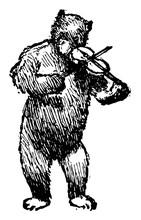 Bear Playing Violin, Vintage Illustration