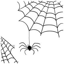 Spider Web Illustration With H...