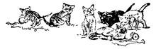 Six Cats, Vintage Illustration.