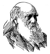 Charles Robert Darwin, Vintage...