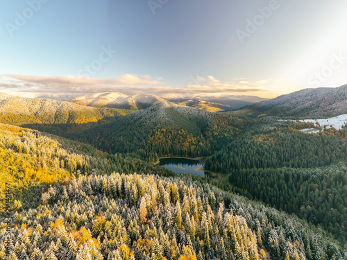 Foto auf Gartenposter Himmelblau Golden autumn drone view of forest landscape with yellow trees from above