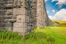 Famous Ribble Valley Viaduct R...